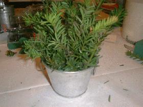 cacher la mousse avec de la verdure (petites branches de sapin...)