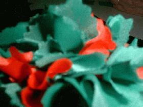 couvrir l'oeuf en mêlant des carrés rouges